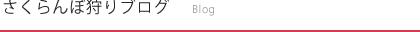 わくわく観光村公式ホームページ(山梨のさくらんぼ狩り)ブログ